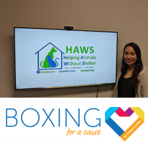 HAWS - Boxing for a Cause - Jan 2020