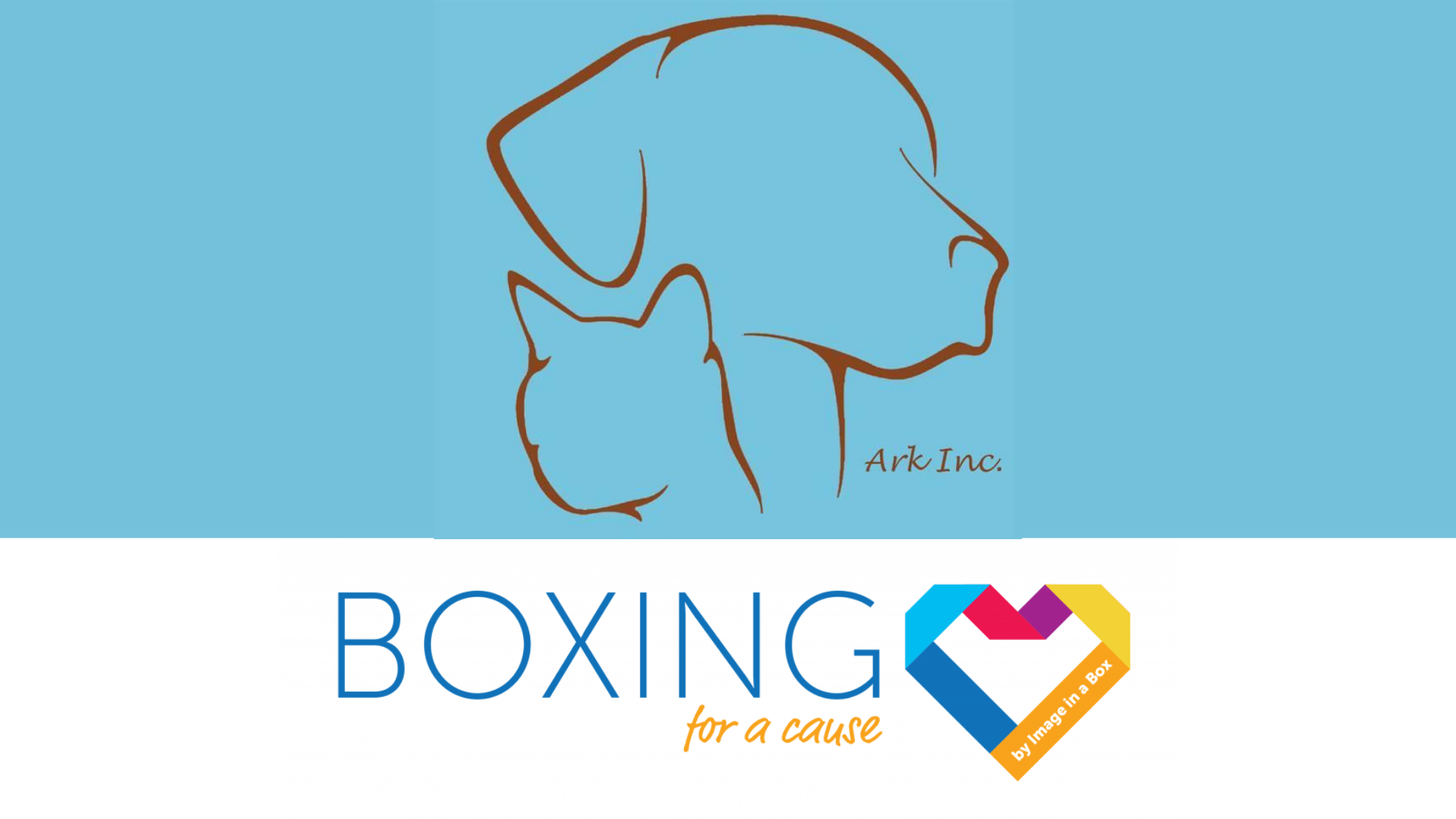 Featured image on Boxing for a Cause - The Ark Inc. - September 2020